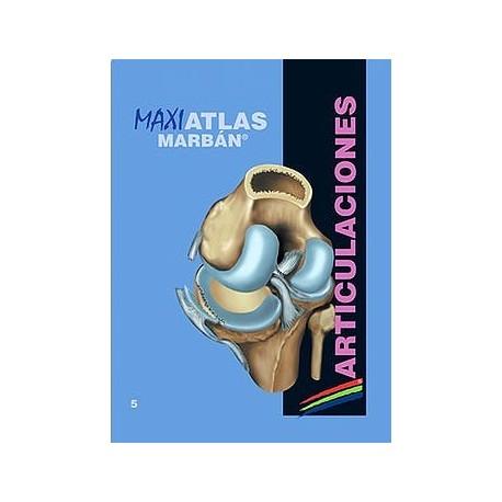 MAXI ATLAS 5 ARTICULACIONES