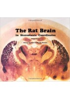 THE RAT BRAIN