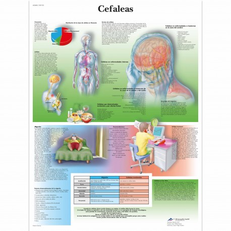 CEFALEAS (VR-3714)