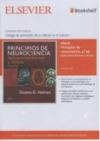 EBOOK PRINCIPIOS DE NEUROCIENCIA