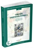 CIRUGIA ESOFAGOGASTRICA Nº 17 (GUIAS CLINICAS DE LA ASOCIACION ESPAÑOLA DE CIRUJANOS)