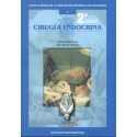 CIRUGIA ENDOCRINA Nº 1 (GUIAS CLINICAS DE LA ASOCIACION ESPAÑOLA DE CIRUJANOS)