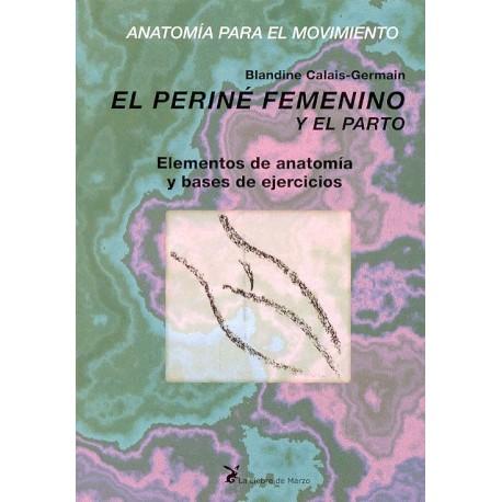 EL PERINE FEMENINO