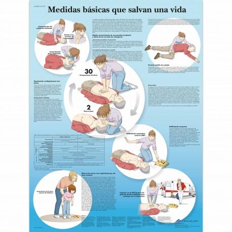 MEDIDAS BASICAS QUE SALVAN UNA VIDA (VR3770)