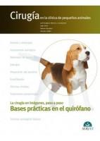 CIRUGIA EN LA CLINICA DE PEQUEÑOS ANIMALES. BASES PRACTICAS EN EL QUIROFANO