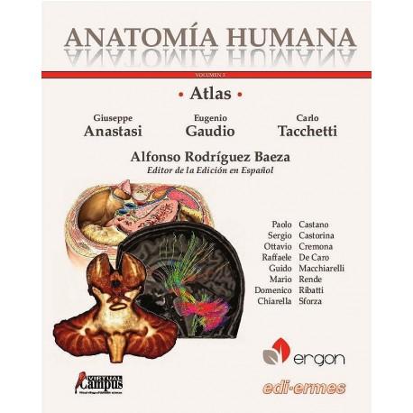 ATLAS DE ANATOMIA HUMANA (VOL.3) ABDOMEN. PELVIS Y PERINE. MIEMBRO SUPERIOR E INFERIOR. SISTEMA NERVIOSO